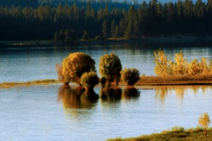 Roosevelt Lake Island
